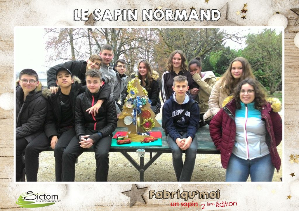 participation-sapin-normand